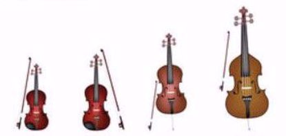 Picture of S1600 - Recital - Any Stringed Instrument