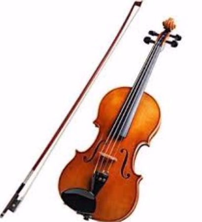 Picture for category Viola